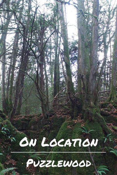 Puzzlewood On Location