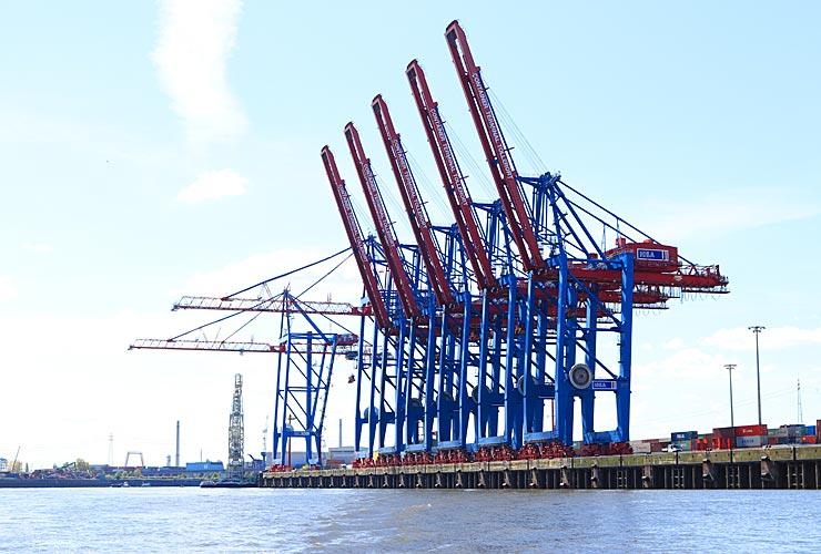 The Hamburg Cranes