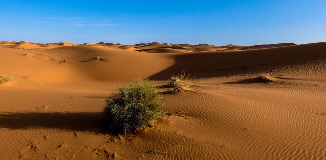 Morocco Dunes