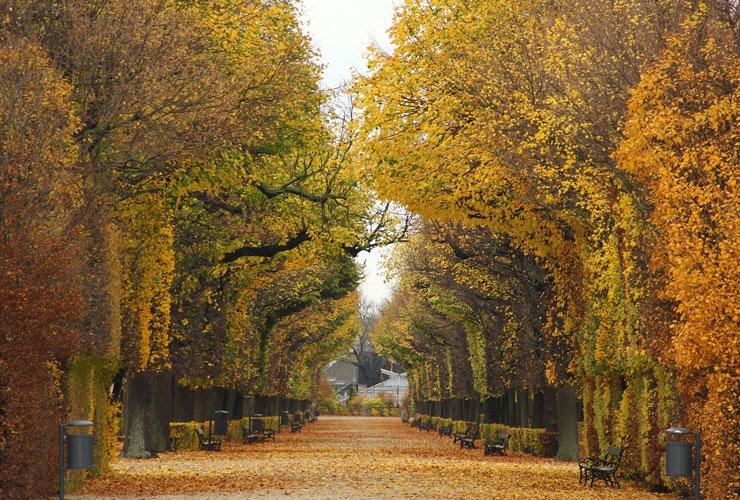 Vienna Parks